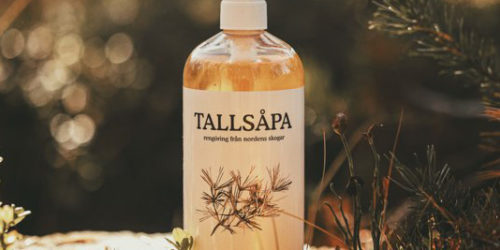 tallsapa-allrengoring-skogsbild.jpg